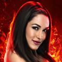 Brie Brie Bella
